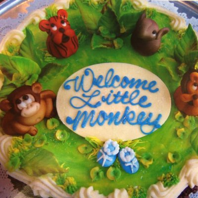 WELCOME LITTLE MONKEY